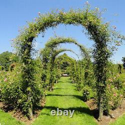 2m Garden Arch Trellis Arched Frame Tubular Arbour Climbing Plant Metal Archway