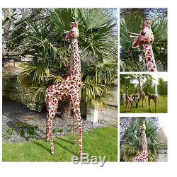 Figure Animale De Jardin De Zoo De Jardin De Zebre De Sataffe De Girafe En Métal Peint